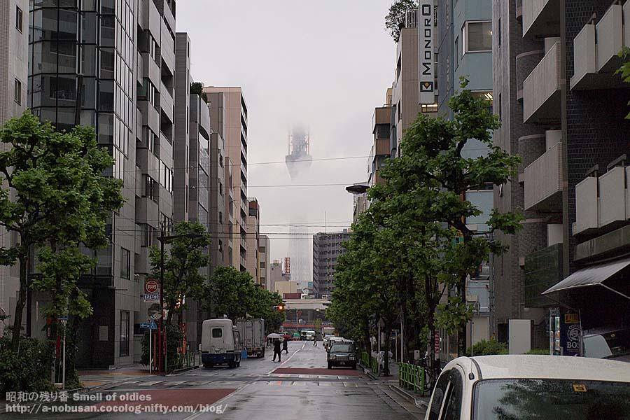 P9280085_higashinihonbashi_tree