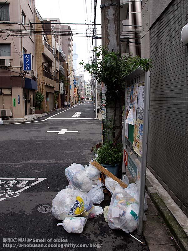 Pa010416_janka_skytree