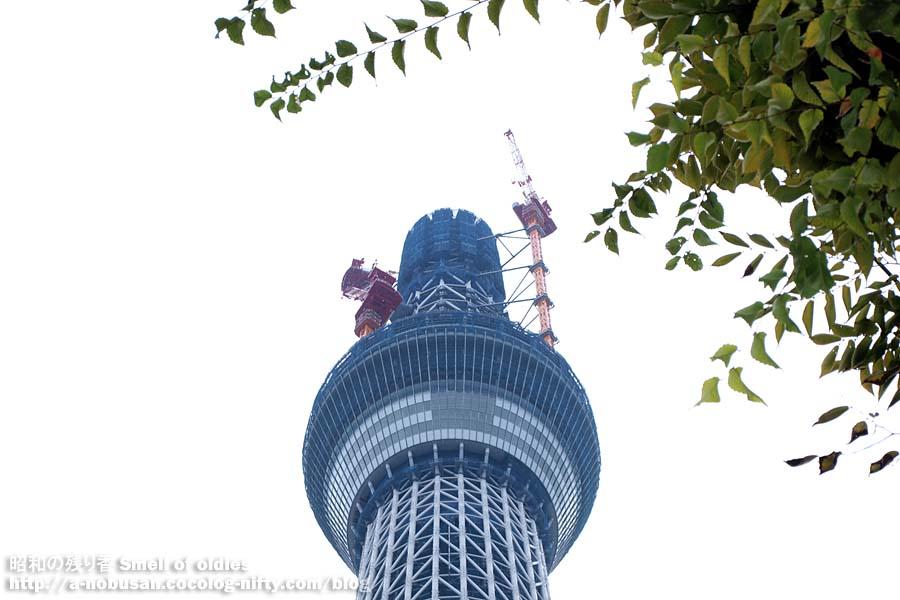 Pa190344_tokyo_sky_tree