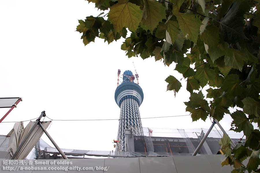 Pa190400_narihirabashi