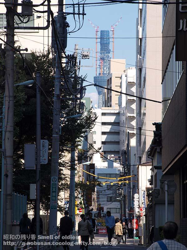 Pa270334_jisshikouen_skytree
