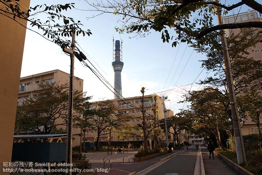 Pb030464_bunka_danchi_skytree