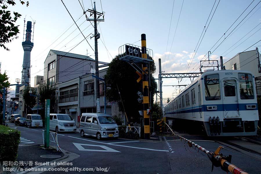 Pb030549_jyukkenbashi_dori