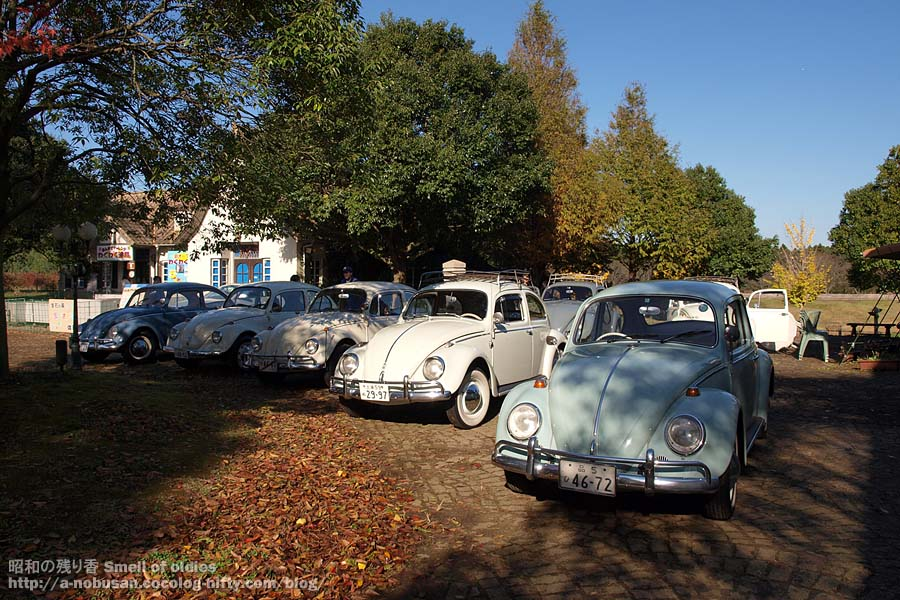 Pb157389_vw_vintage_beetles