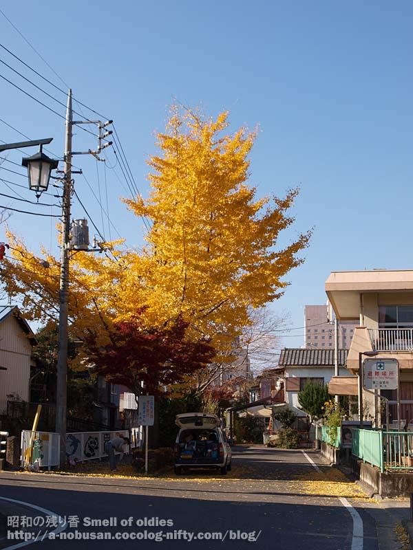 Pb270051_babakawa_ichou