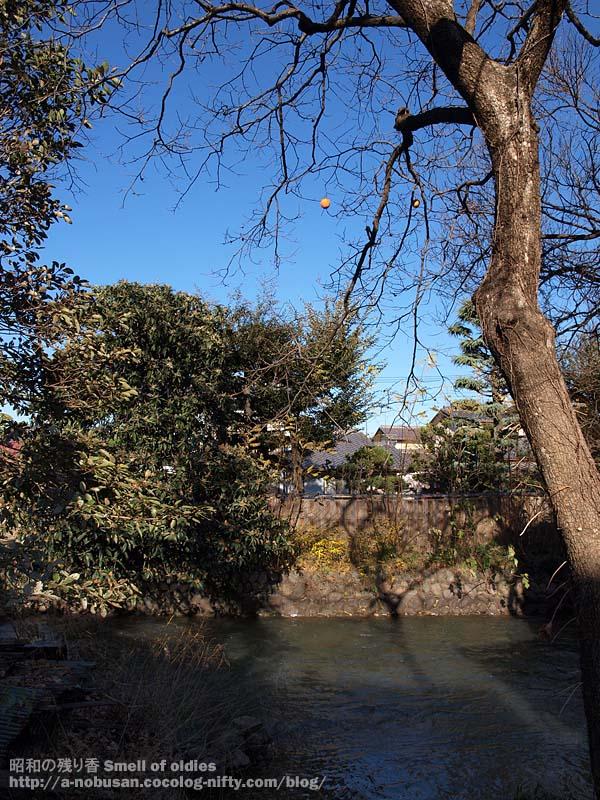 Pc042158_maebashi_park_ura
