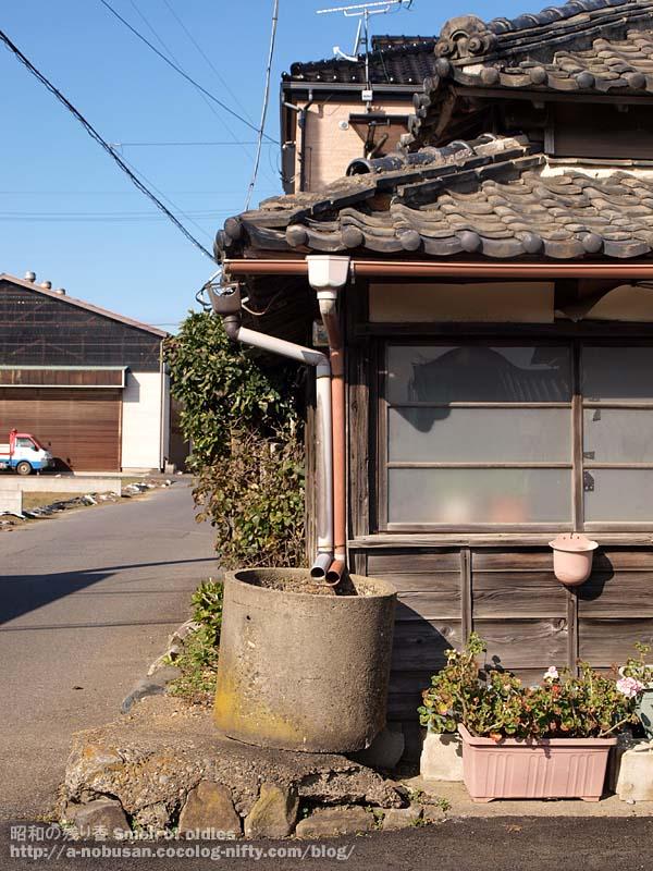 Pc123776_sawara_furuiie