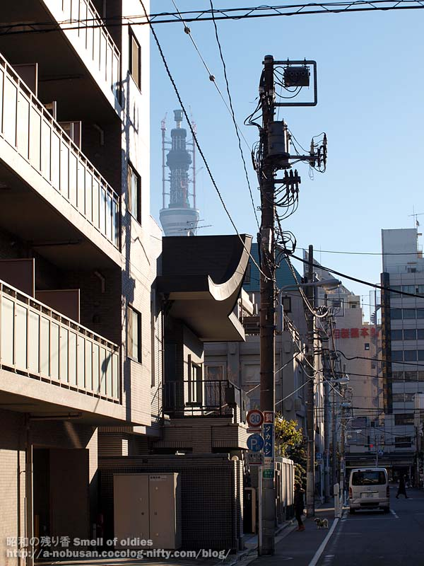 Pc175000_tokyo_sky_tree