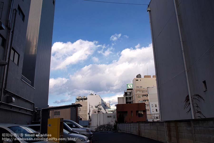 Pc257717_suzuran