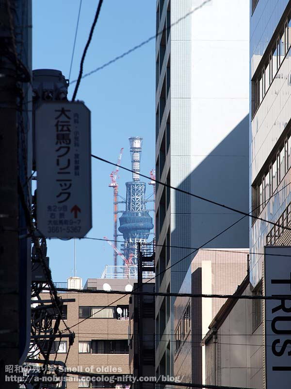 P1132715_odenmacho