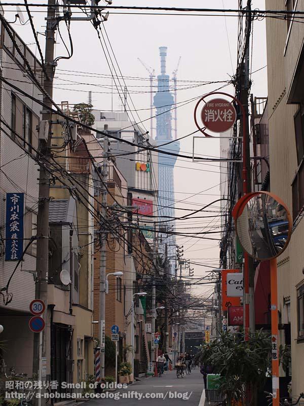 P1150020_nishiasakusa_skytree