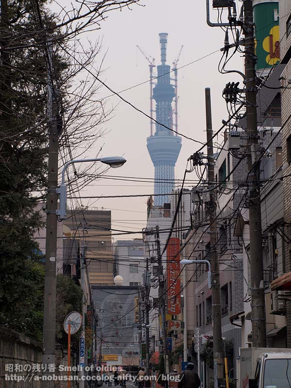 P1150209_peter_tokyo_skytree
