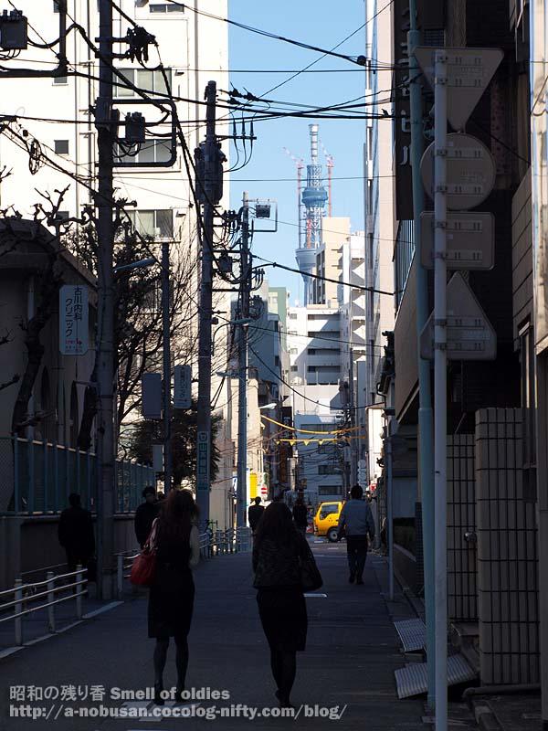 P1180196_jisshikoen_sky_tree_2