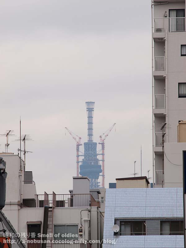 P2020399_tokyo_sky_tree