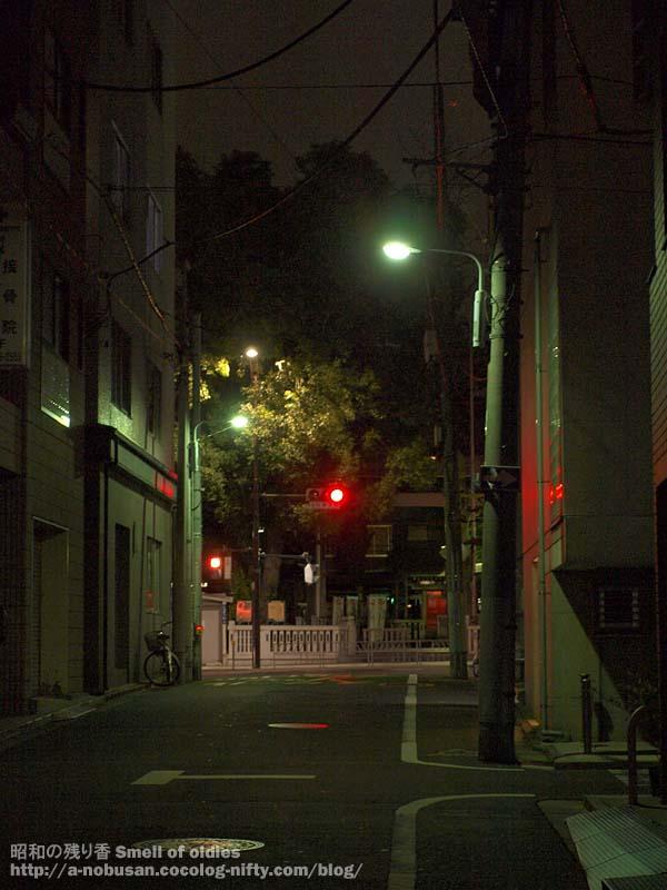 P2100130_torigoe_jinjya_night