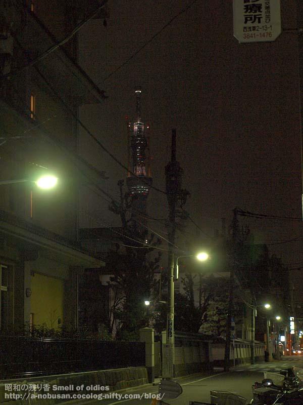 P2100166_asakusa_night_tree