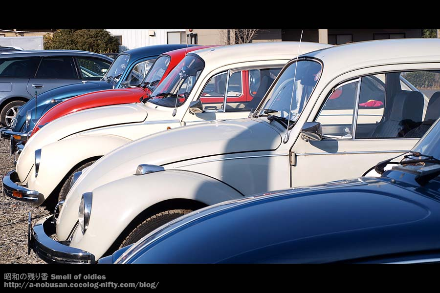 P2130062_vw_beetle_fronts