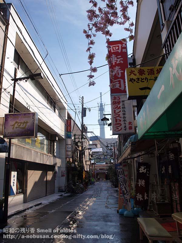 P2150285_tokyo_sky_tree_asakusa