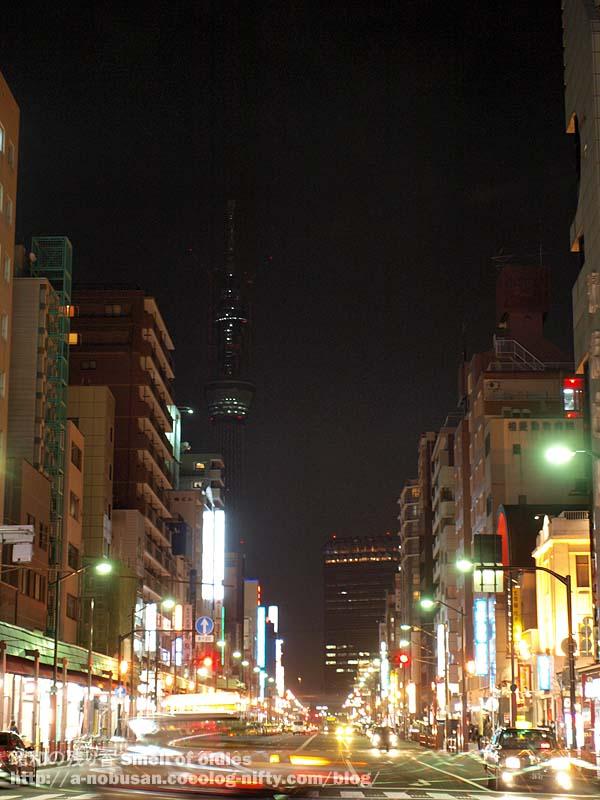 P2230267_tokyo_sky_tree_night