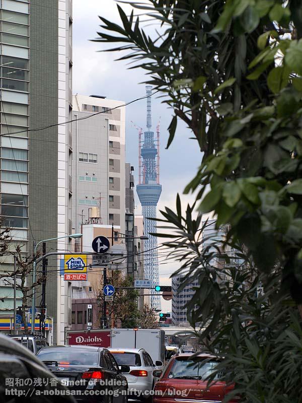 P3020057_gairojyu_sky_tree