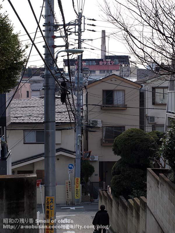 P3080078_togoshi_park