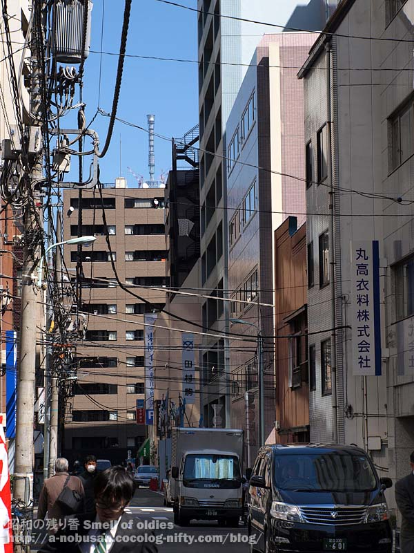 P3100059_tokyo_sky_tree