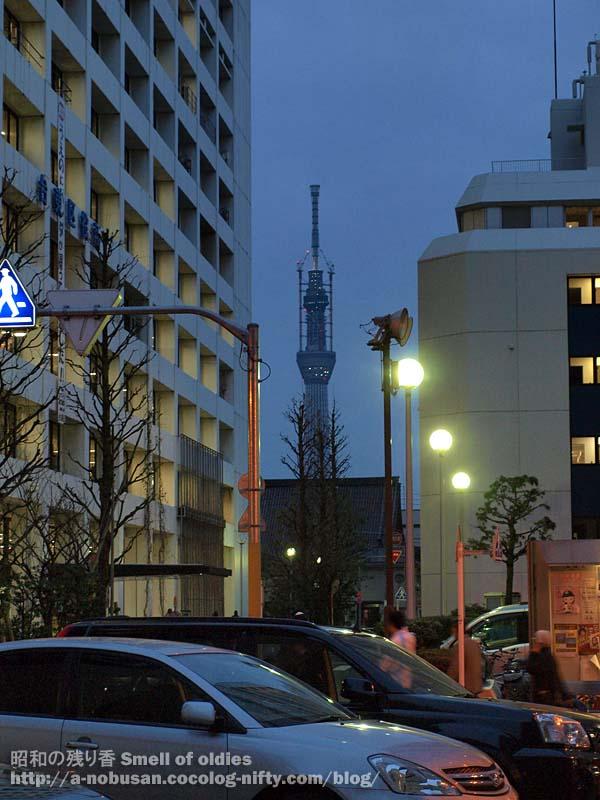 P3140347_tokyo_sky_tree