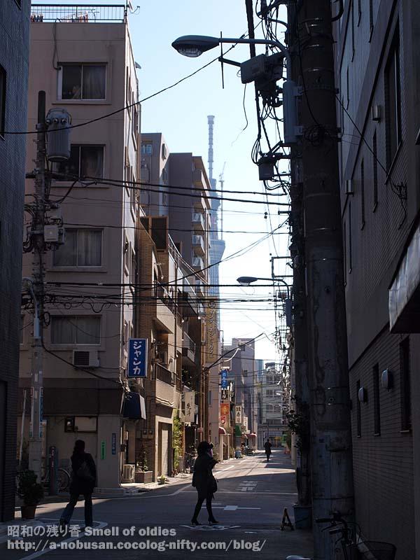 P3170011_nishiasakusa_sky_tree