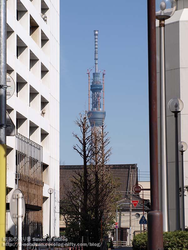 P3190777_taito_kuyakusho