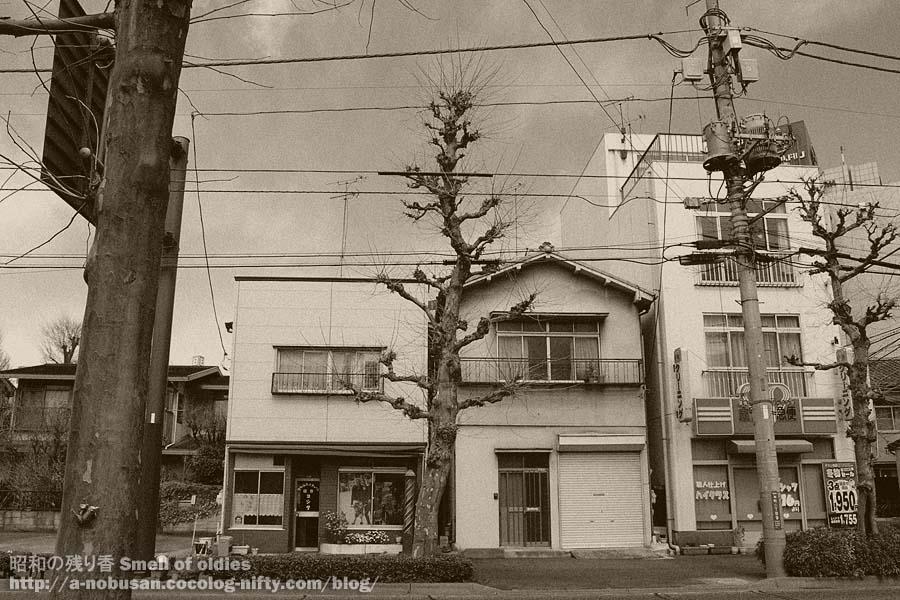 P3270030_tokoya