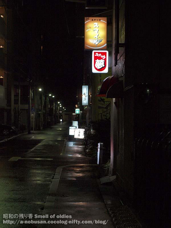 P3300666_rein_asakusa