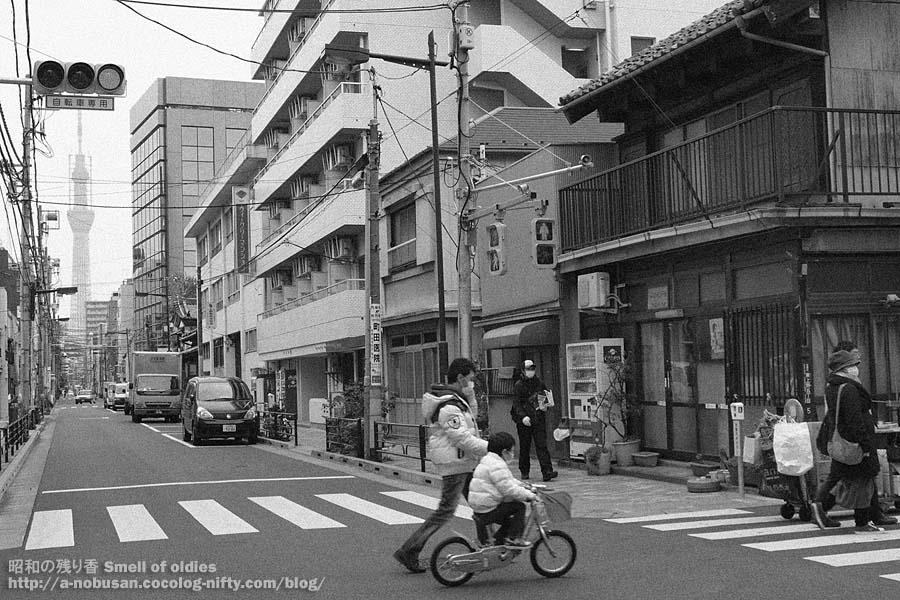 P4020051_shitamachi_sky_tree