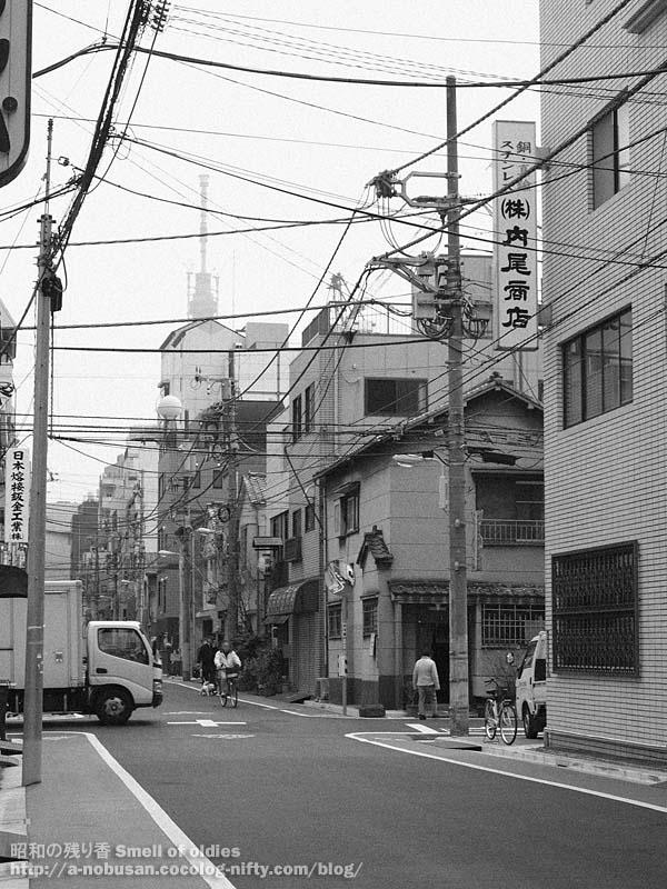 P4020633_shitamachi_sky_tree