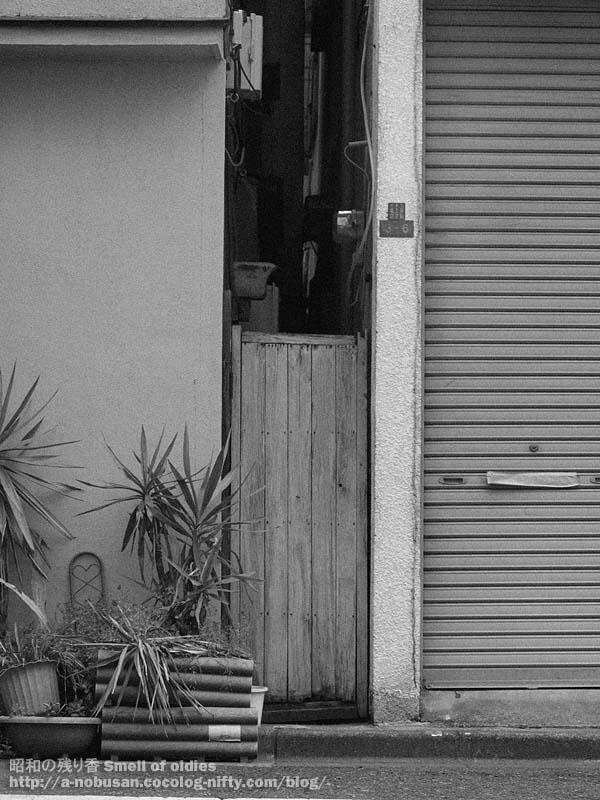 P4020723_small_door
