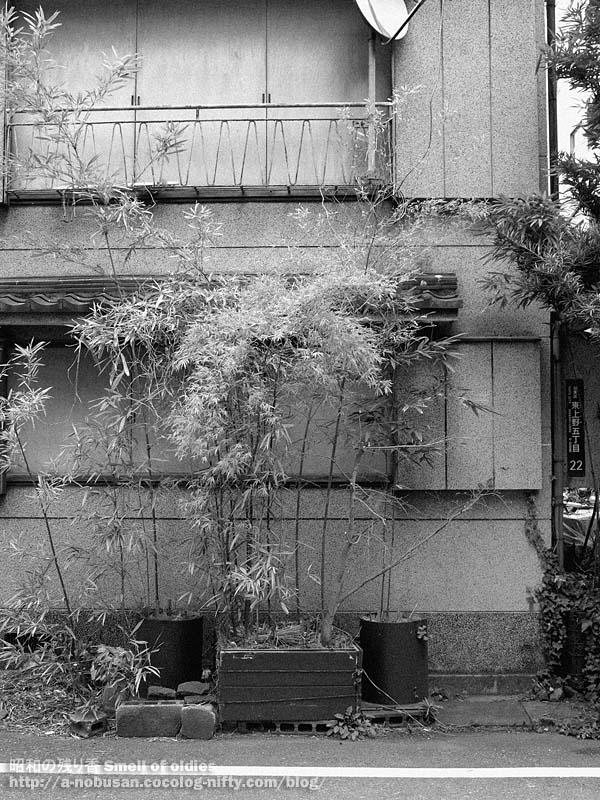 P4020839_higashi_ueno