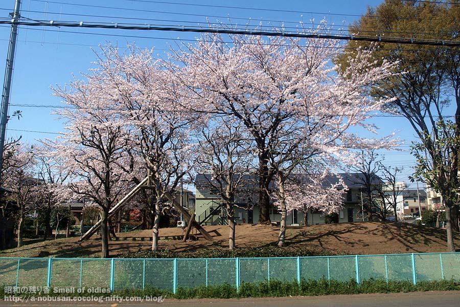P4120280_cherry_park