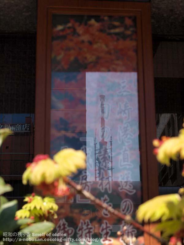 P4140649_nishiasakusa_skytree