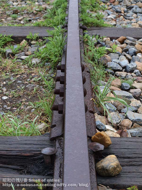 P4240218_rail_joint_2