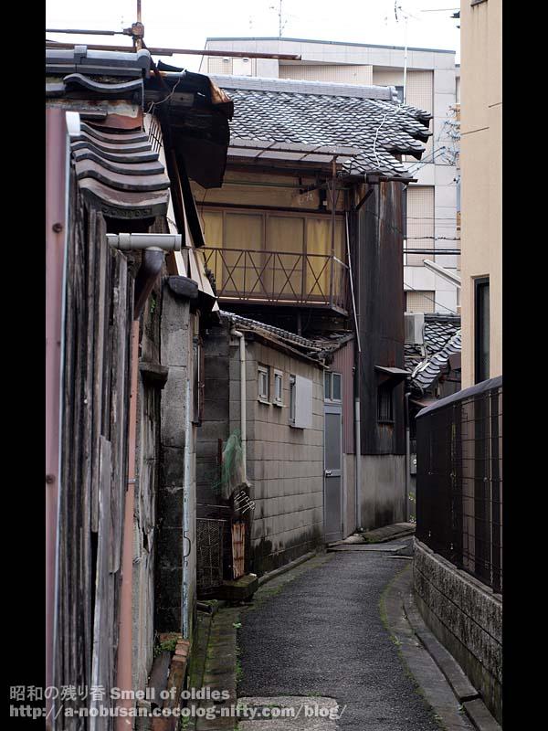 P4240465_kyoto_roji_exit