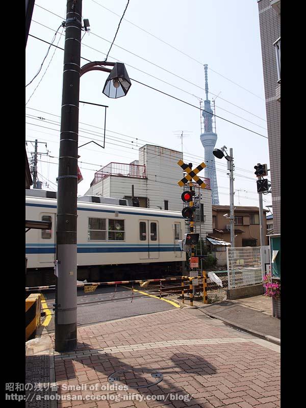 P5040431_kameido_line_sky_tree