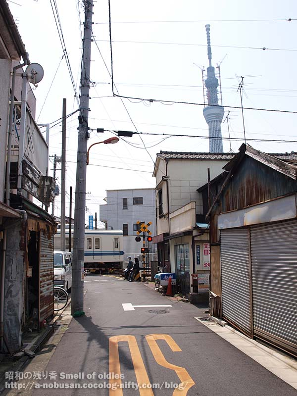 P5040533_kyojima_kamedo_line