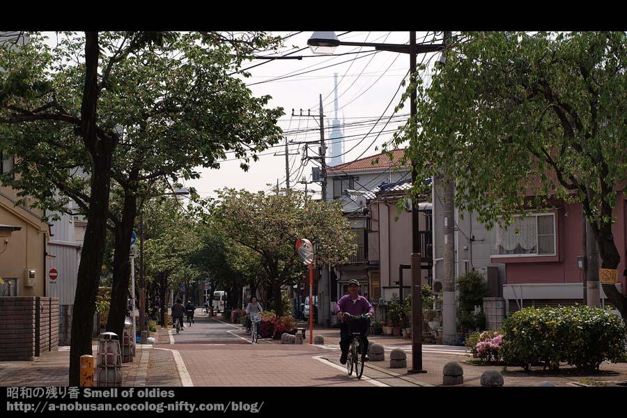 P5040760_yotsugi_sky_tree
