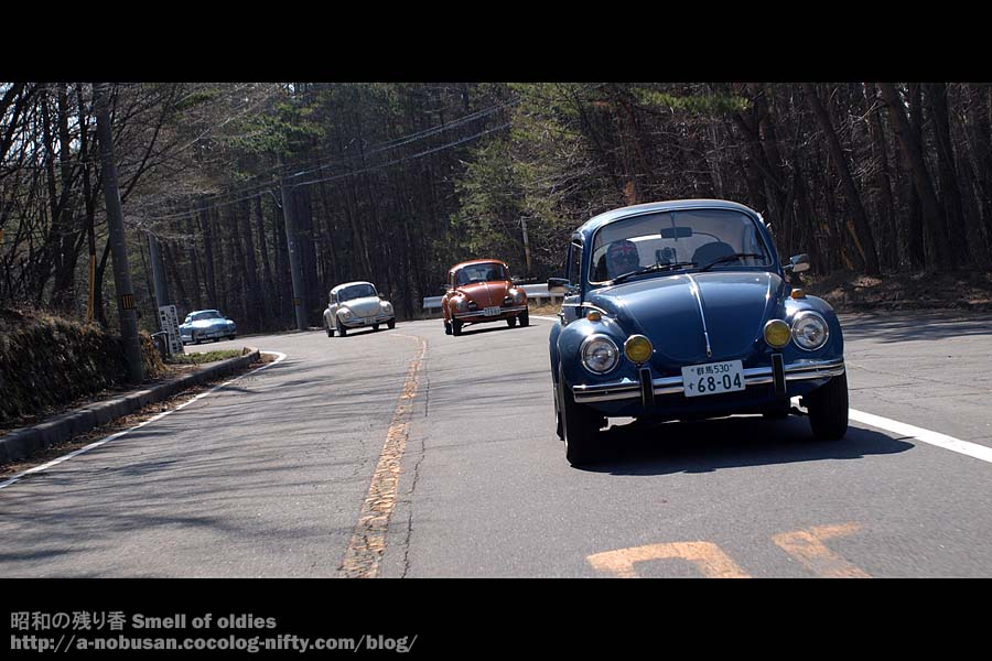 P5080218_3_1303_super_beetles_2