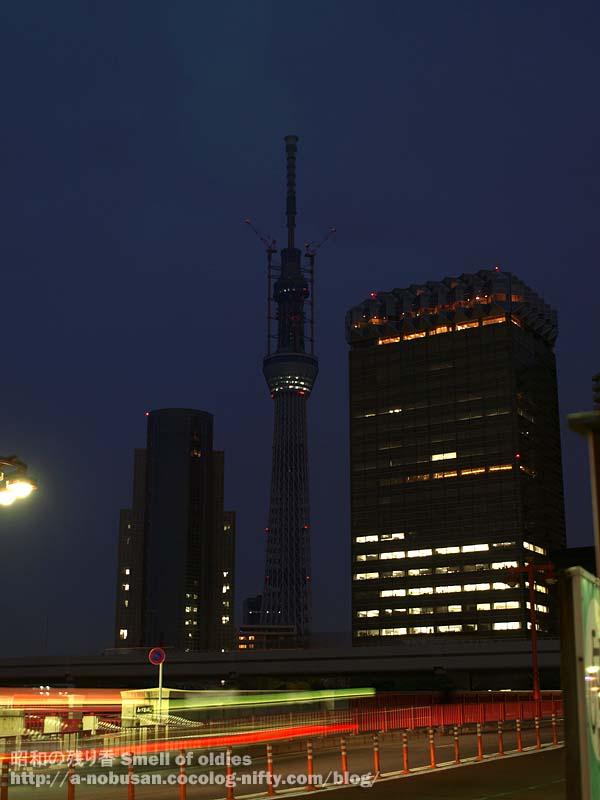 P5170091_azumabashi_night