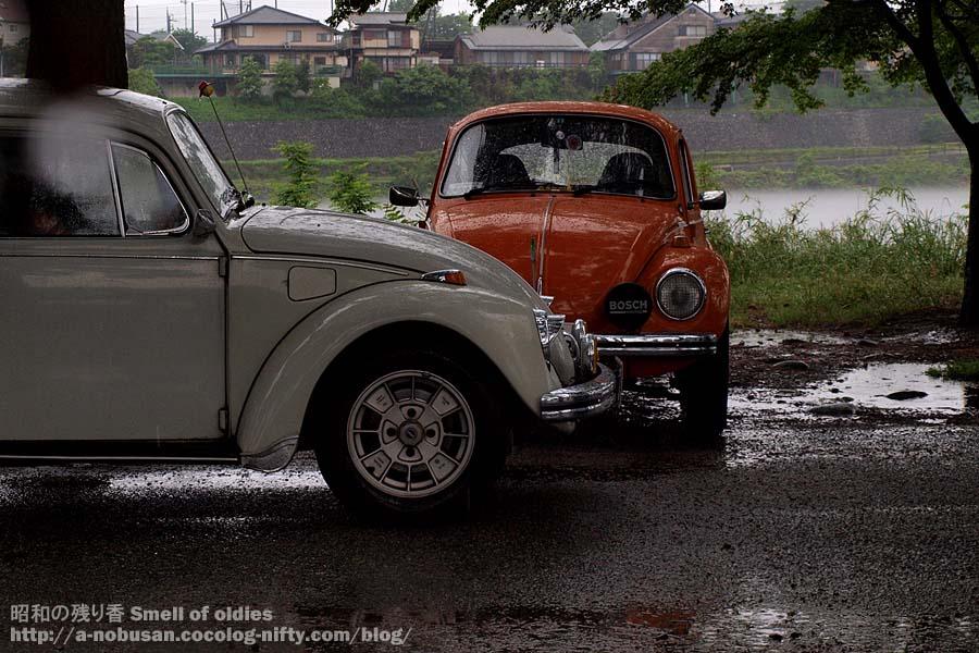 P5290227_vw_beetle