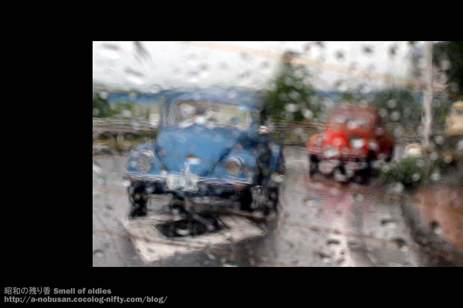 P5290326_blue_and_red_vw_bugs
