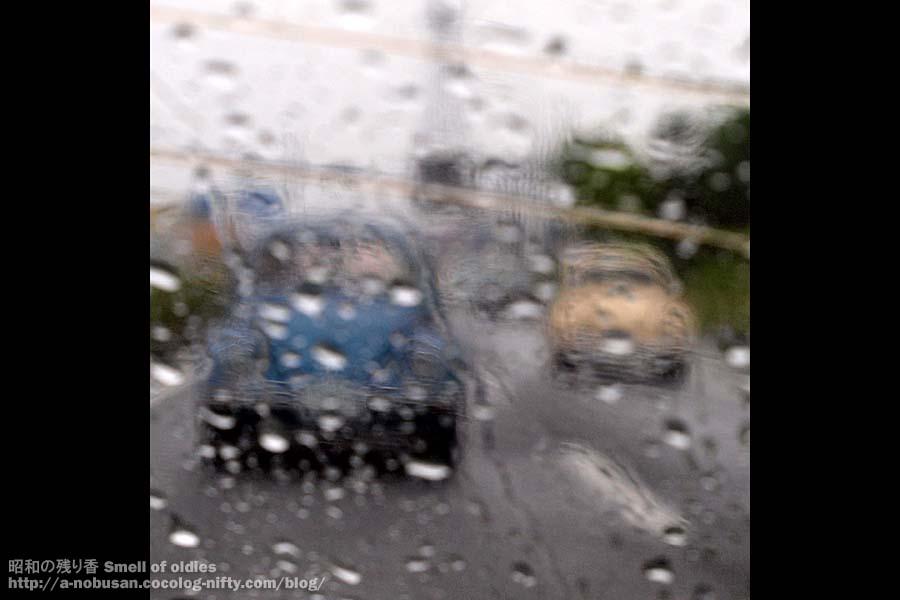 P5290418_rainy_2bugs
