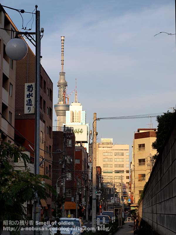 P6210480_kikusui_sky_tree