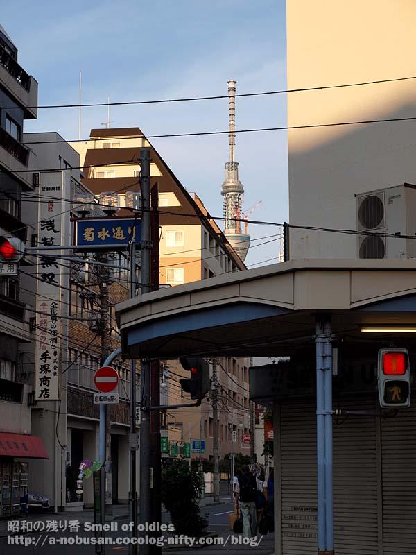 P6210486_kikusui_dori