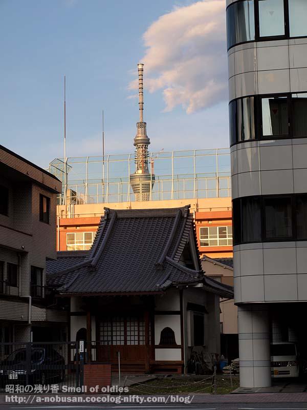 P6210616_tera_gakkou_skytree